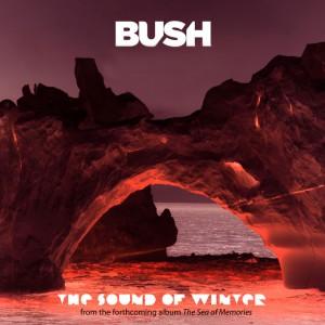 В России был выпущен новый альбом Bush