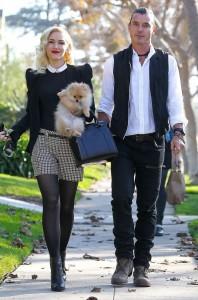 Гвен и Гэвин - в списке самых стильных звездных пар